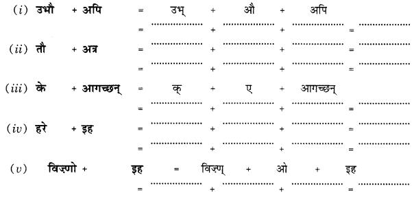Class 10 Sanskrit Grammar Book Solutions सन्धिः Q8