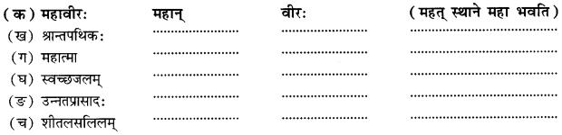 Class 10 Sanskrit Grammar Book Solutions समासाः Q11