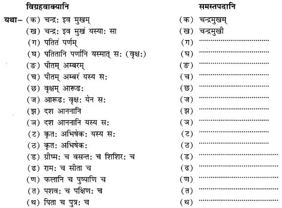 Class 10 Sanskrit Grammar Book Solutions समासाः Q14