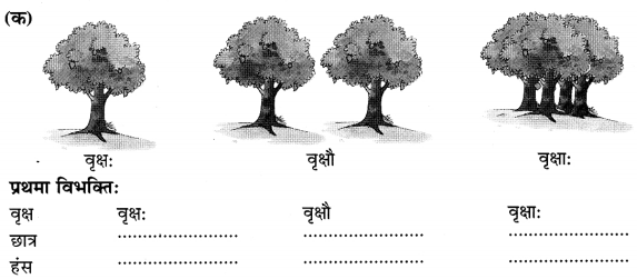Class 6 Sanskrit Grammar Book Solutions संज्ञा शब्द-रूपाणि तथा वाक्यप्रयोगः 1