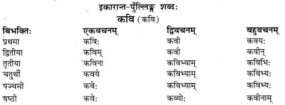 Class 6 Sanskrit Grammar Book Solutions संज्ञा शब्द-रूपाणि तथा वाक्यप्रयोगः 10