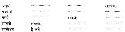 Class 6 Sanskrit Grammar Book Solutions संज्ञा शब्द-रूपाणि तथा वाक्यप्रयोगः 12