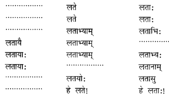 Class 6 Sanskrit Grammar Book Solutions संज्ञा शब्द-रूपाणि तथा वाक्यप्रयोगः 13