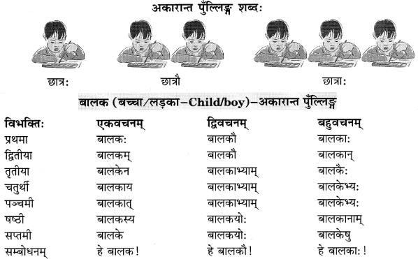 Class 6 Sanskrit Grammar Book Solutions संज्ञा शब्द-रूपाणि तथा वाक्यप्रयोगः 2
