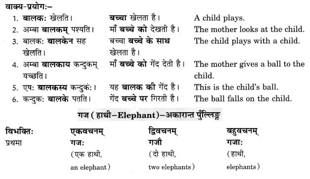 Class 6 Sanskrit Grammar Book Solutions संज्ञा शब्द-रूपाणि तथा वाक्यप्रयोगः 3