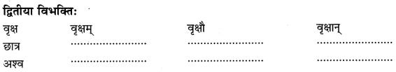 Class 6 Sanskrit Grammar Book Solutions संज्ञा शब्द-रूपाणि तथा वाक्यप्रयोगः 4