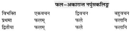 Class 6 Sanskrit Grammar Book Solutions संज्ञा शब्द-रूपाणि तथा वाक्यप्रयोगः 6