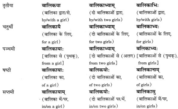 Class 6 Sanskrit Grammar Book Solutions संज्ञा शब्द-रूपाणि तथा वाक्यप्रयोगः 8
