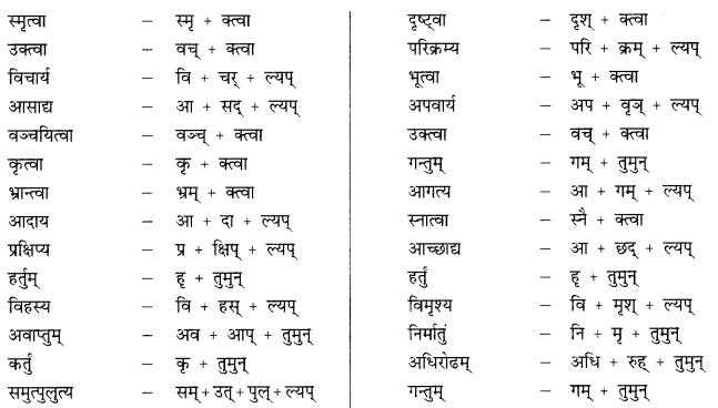 Class 9 Sanskrit Grammar Book Solutions प्रत्ययाः 6
