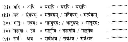Class 9 Sanskrit Grammar Book Solutions सन्धिः 2