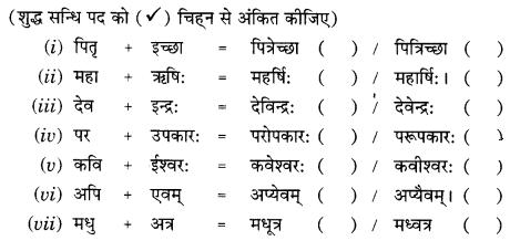 Class 9 Sanskrit Grammar Book Solutions सन्धिः 4