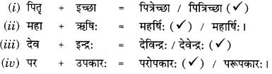 Class 9 Sanskrit Grammar Book Solutions सन्धिः 5