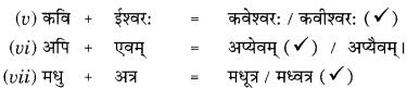 Class 9 Sanskrit Grammar Book Solutions सन्धिः 6