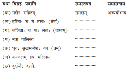 NCERT Solutions for Class 10 Sanskrit Shemushi Chapter 1 शुचिपर्यावरणम् Q6