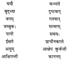 NCERT Solutions for Class 10 Sanskrit Shemushi Chapter 2 बुद्धिर्बलवती सदा Additional Q6.1