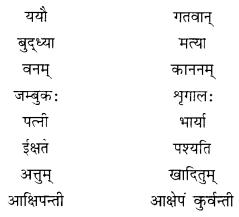 NCERT Solutions for Class 10 Sanskrit Shemushi Chapter 2 बुद्धिर्बलवती सदा Additional Q6.3