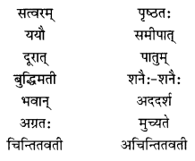NCERT Solutions for Class 10 Sanskrit Shemushi Chapter 2 बुद्धिर्बलवती सदा Additional Q8.1