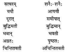 NCERT Solutions for Class 10 Sanskrit Shemushi Chapter 2 बुद्धिर्बलवती सदा Additional Q8.3