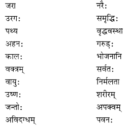 NCERT Solutions for Class 10 Sanskrit Shemushi Chapter 3 व्यायामः सर्वदा पथ्यः Additional Q5.1
