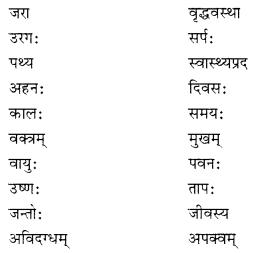 NCERT Solutions for Class 10 Sanskrit Shemushi Chapter 3 व्यायामः सर्वदा पथ्यः Additional Q5.3