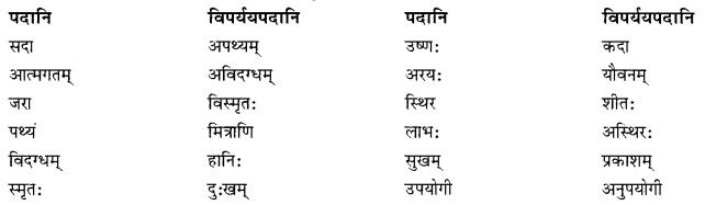 NCERT Solutions for Class 10 Sanskrit Shemushi Chapter 3 व्यायामः सर्वदा पथ्यः Additional Q7
