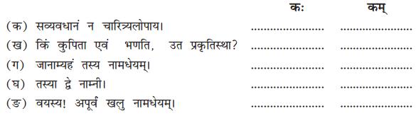 NCERT Solutions for Class 10 Sanskrit Shemushi Chapter 4 शिशुलालनम् Q5