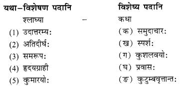 NCERT Solutions for Class 10 Sanskrit Shemushi Chapter 4 शिशुलालनम् Q6.2