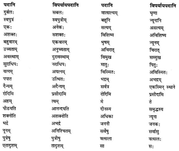 NCERT Solutions for Class 10 Sanskrit Shemushi Chapter 5 जननी तुल्यवत्सला Additional Q10.1
