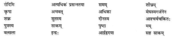 NCERT Solutions for Class 10 Sanskrit Shemushi Chapter 5 जननी तुल्यवत्सला Additional Q8.1