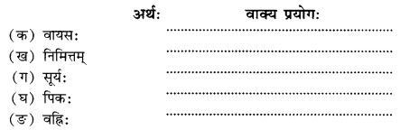 NCERT Solutions for Class 10 Sanskrit Shemushi Chapter 6 सुभाषितानि Q7
