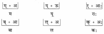 NCERT Solutions for Class 6 Sanskrit Chapter 1 शब्द परिचयः 1.6