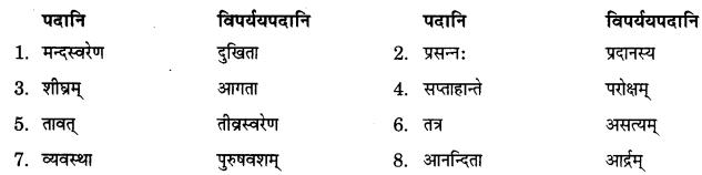 NCERT Solutions for Class 9 Sanskrit Shemushi Chapter 3 गोदोहनम् 4