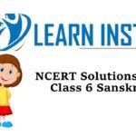 NCERT Solutions for Class 6 Sanskrit Ruchira Bhag 1