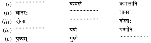 MCQ Questions for Class 6 Sanskrit Chapter 3 शब्द परिचयः 3 with Answers 3