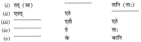 MCQ Questions for Class 6 Sanskrit Chapter 3 शब्द परिचयः 3 with Answers 5