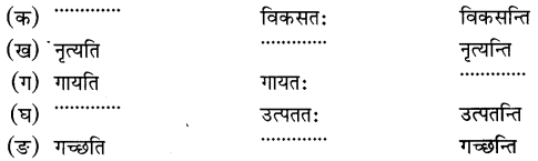 MCQ Questions for Class 6 Sanskrit Chapter 3 शब्द परिचयः 3 with Answers 7
