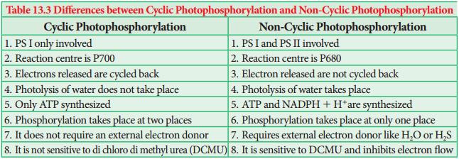 Photophosphorylation img 3
