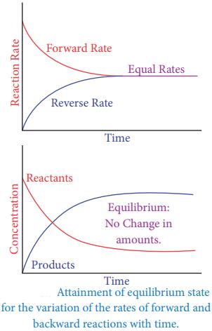 Chemical Equilibrium img 1